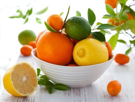 פרוייקט פירות ההדרהגדול